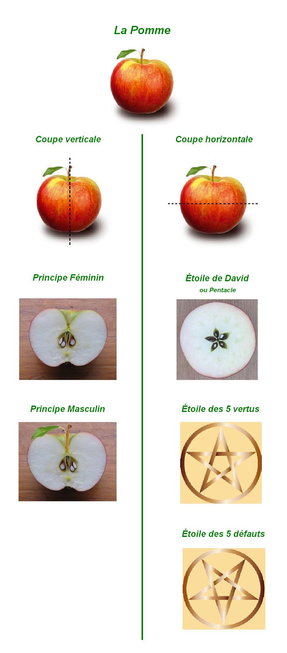 Symbole de la pomme